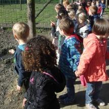 StruisvogelnestHilde (5)