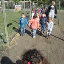 StruisvogelnestHilde (6)