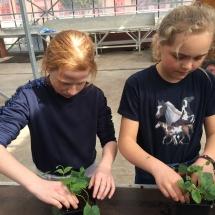 bezoek tuinbouwschool (2)