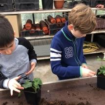 bezoek tuinbouwschool (3)