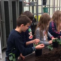 bezoek tuinbouwschool (5)