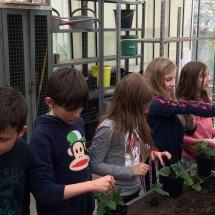 bezoek tuinbouwschool (6)