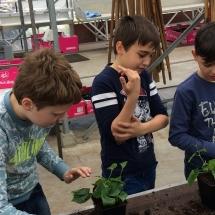 bezoek tuinbouwschool (7)