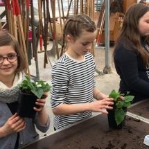 bezoek tuinbouwschool (8)
